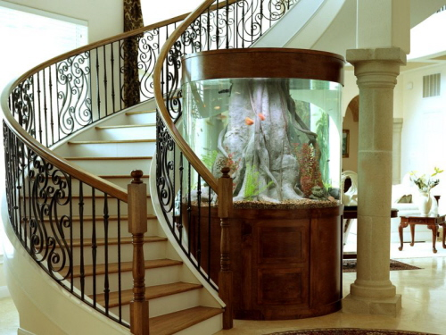 аквариум тбилиси